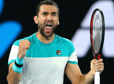 Чилич пробился вфинал Australien Open