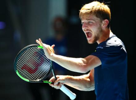 Давид гоффин теннис